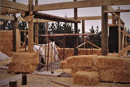 internal walls timber straw bales